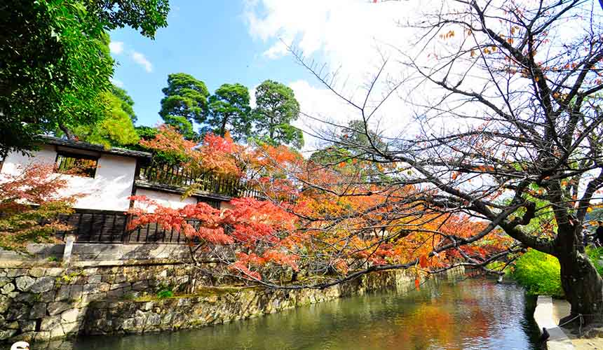 岡山倉敷美觀地區圖片