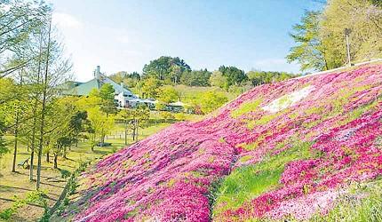 日本岡山「美咲町」的「牧場之館」(まきばの館)四季美不勝收