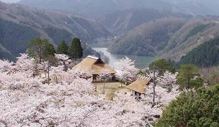日本岡山「美咲町」的「三休公園」