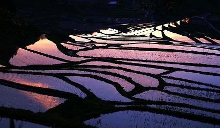 日本岡山「美咲町」的「大垪和西棚田」絕景