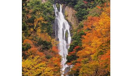 日本山陽山陰岡山自駕租車推薦「TOYOTA Rent a Car」,開車去「神庭瀑布」遊玩