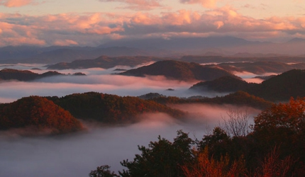 大山展望台的雲海