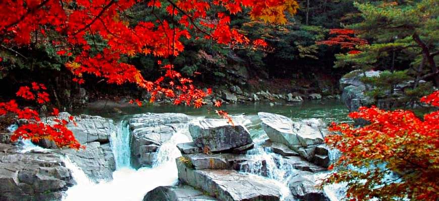 日本山陽山陰楓葉推薦岡山奧津溪
