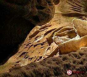 日本冈山钟乳石洞秘境去「新见」!钟乳石洞「井仓洞」内的钟乳石奇形怪状