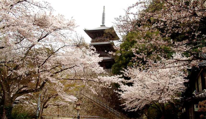 日本结缘圣地「岛根」、柯南故乡「鸟取」旅游推荐:安来市的清水寺