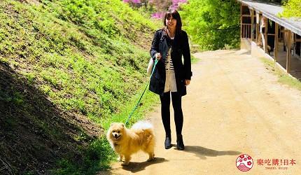 冈山旅游饭店亲子住宿推荐「濑户内钻石酒店」附近的「涉川动物公园」