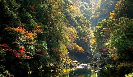 日本山阳山阴「山口市」的长门峡红叶
