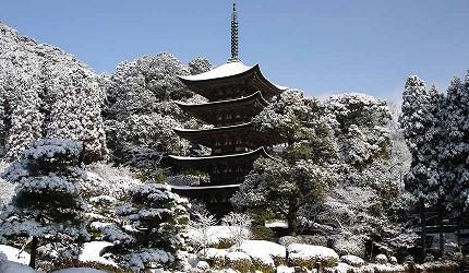 日本山阳山阴「山口市」的瑠璃光寺冬季照片