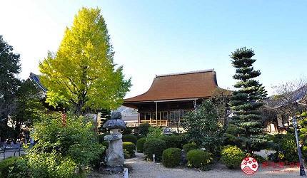 日本山阳山阴「山口市」的龙福寺境内