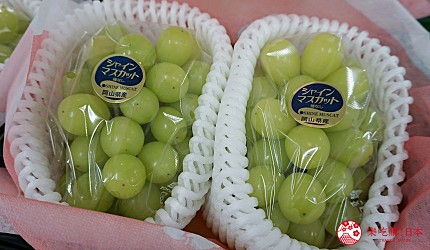 岡山自由行兩天一夜行程推薦!桃子之鄉「赤磐市」的「農MARU園藝」(農マル園芸 あかいわ農園)販售的麝香葡萄