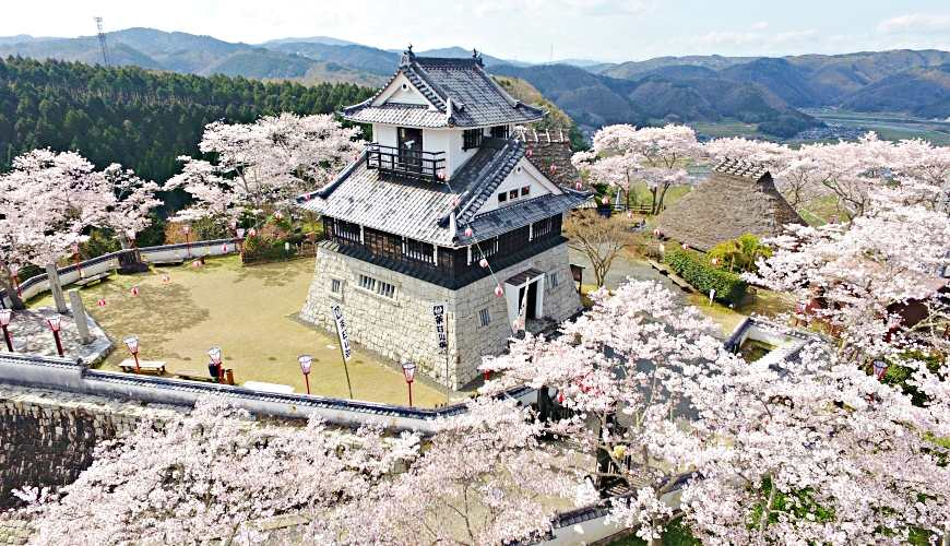 岡山自由行兩天一夜行程推薦!桃子之鄉「赤磐市」的「吉井城山公園」的櫻花美景