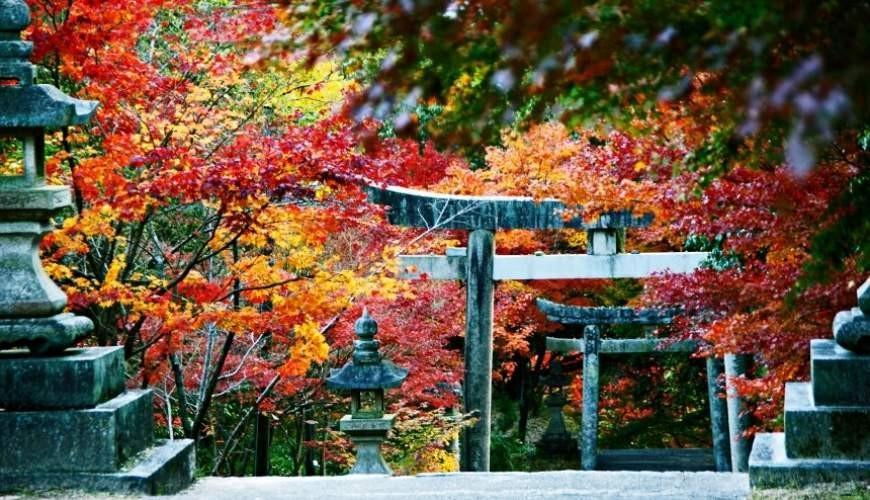 府中八幡神社是「備後地區」的紅葉名所之一